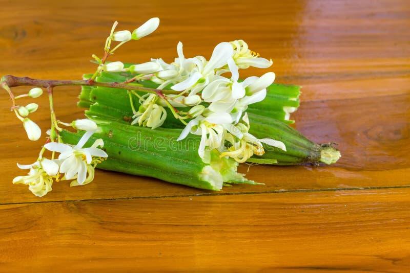 Fiori e seme dentro la mezza manifestazione di Moringa su legno immagine stock