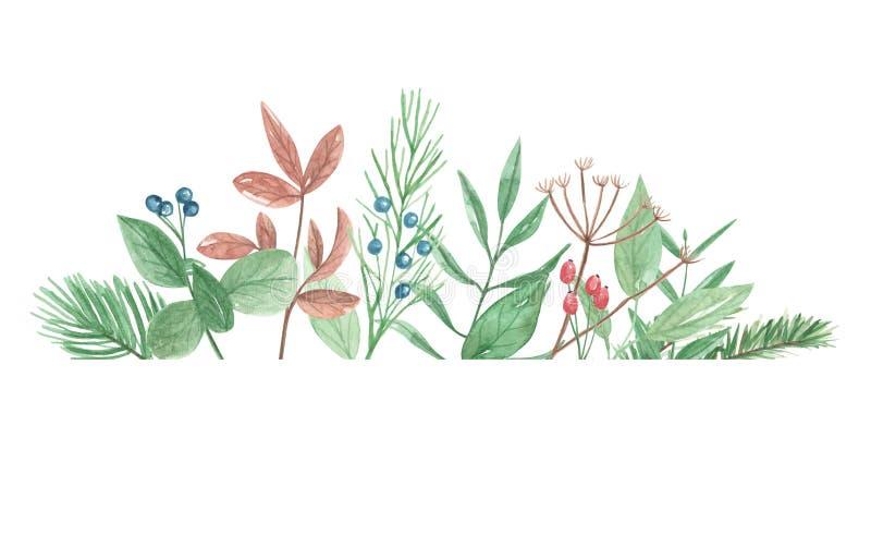 Fiori festivi delle foglie delle bacche di inverno della struttura del confine del fogliame dell'acquerello illustrazione di stock