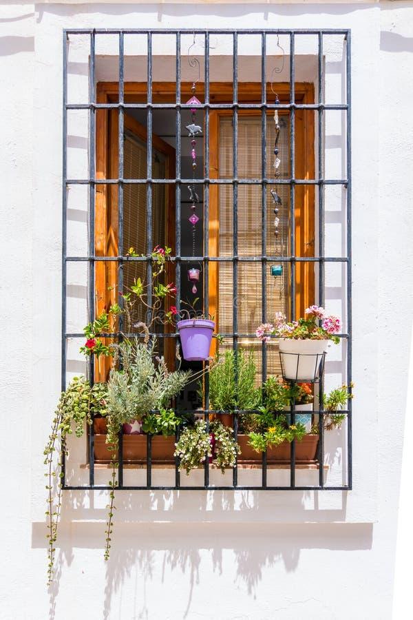 Fiori in finestra antica con le sbarre di ferro arrugginite in una parete bianca a Altea, Spagna immagine stock libera da diritti