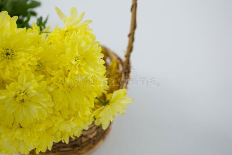 Fiori gialli in canestro di vimini su fondo bianco fotografia stock