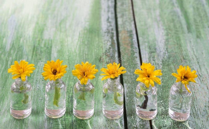 Fiori gialli della calendula in bottiglie della medicina su vecchio fondo di legno verde incrinato immagini stock libere da diritti