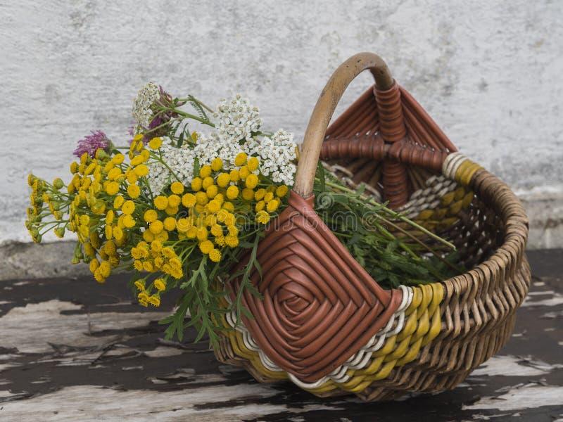 Fiori gialli e bianchi in canestro di vimini sulla pelatura del benc di legno immagine stock libera da diritti