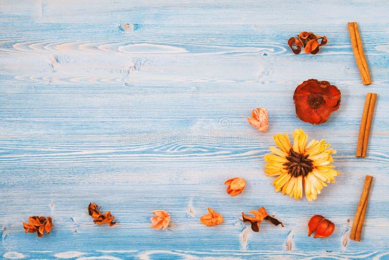 Fiori gialli e rossi su un fondo di legno blu Struttura, fondo Posto per il concetto di vista superiore del testo per una cartoli immagine stock libera da diritti