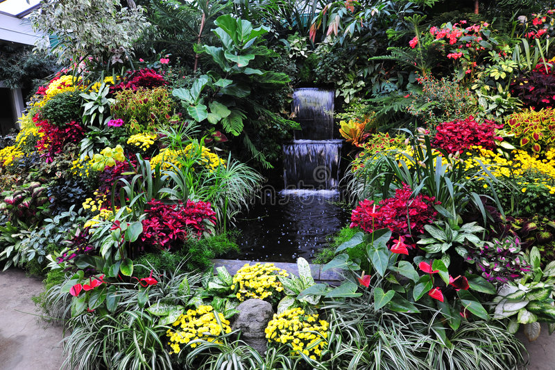Download Fiori in giardini fotografia stock. Immagine di florid - 7310590
