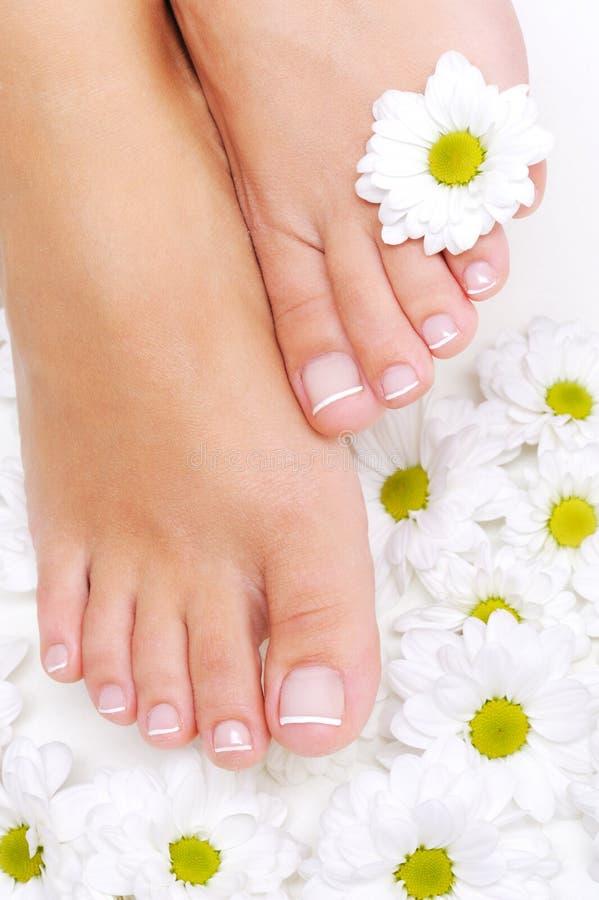 Fiori intorno ai bei piedi della donna immagini stock