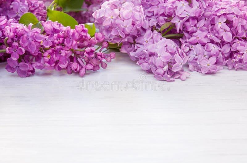 Fiori lilla della primavera come struttura sul fondo di legno bianco della tavola, spazio della copia immagini stock