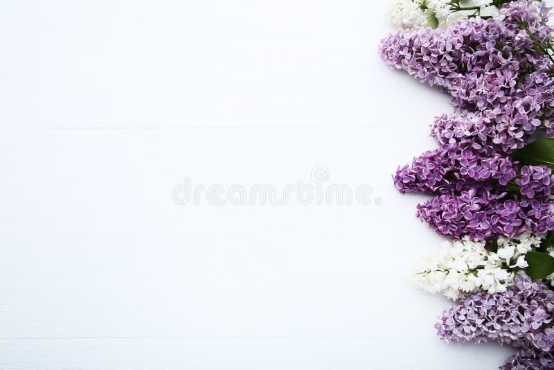 Fiori lilla porpora fotografia stock