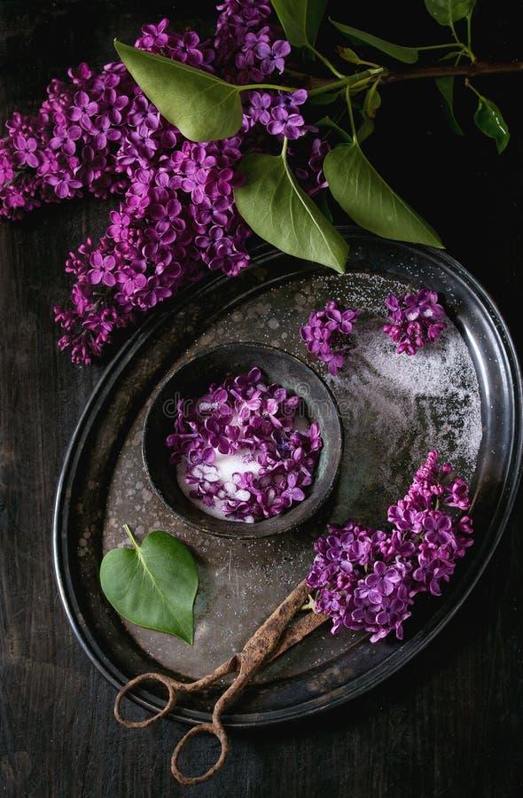 Fiori lilla in zucchero immagine stock libera da diritti