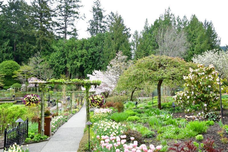 Fiori nei giardini di Butchart Victoria BC immagini stock