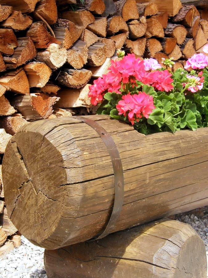 Fiori nel legno immagini stock