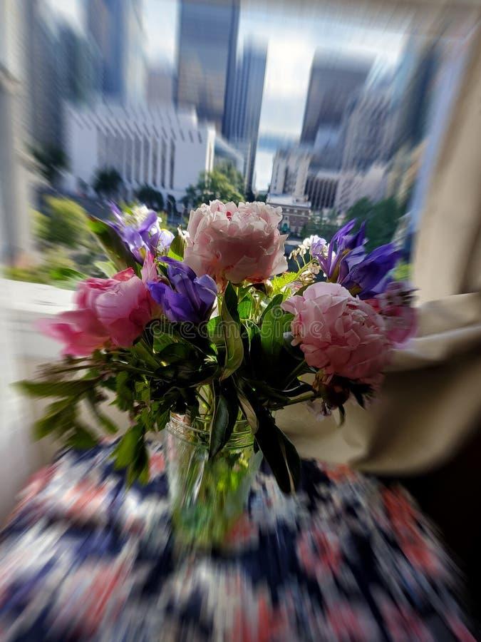 Fiori nella finestra fotografia stock libera da diritti