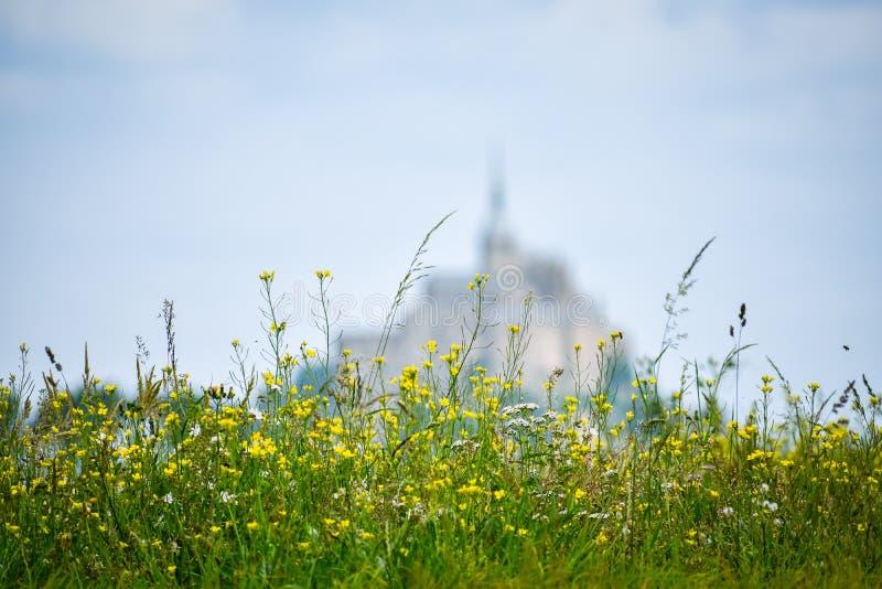 Fiori nella priorità alta con la siluetta defocused di Mont Saint Michel, Francia Copi lo spazio per testo fotografia stock