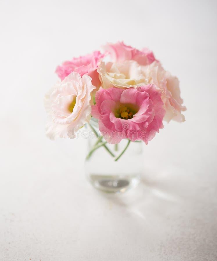 Fiori rosa (eustoma) sulla vecchia tavola rustica fotografie stock