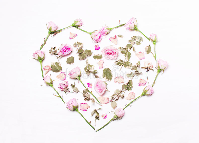 Fiori rosa, foglie verdi sotto forma di un cuore immagine stock
