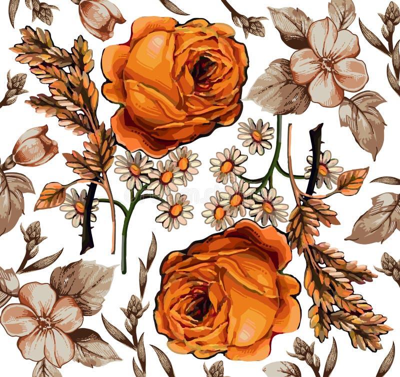 Fiori. Rose. Camomiles. Bello fondo. royalty illustrazione gratis