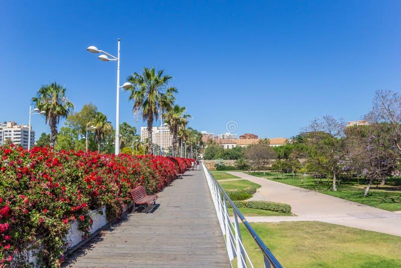 Fiori rossi sul ponte di Puente de Las Flores a Valencia immagini stock libere da diritti