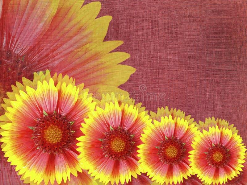 fiori Rosso-gialli, sul fondo del tessuto di Borgogna Composizione floreale luminosa Scheda per la festa illustrazione vettoriale