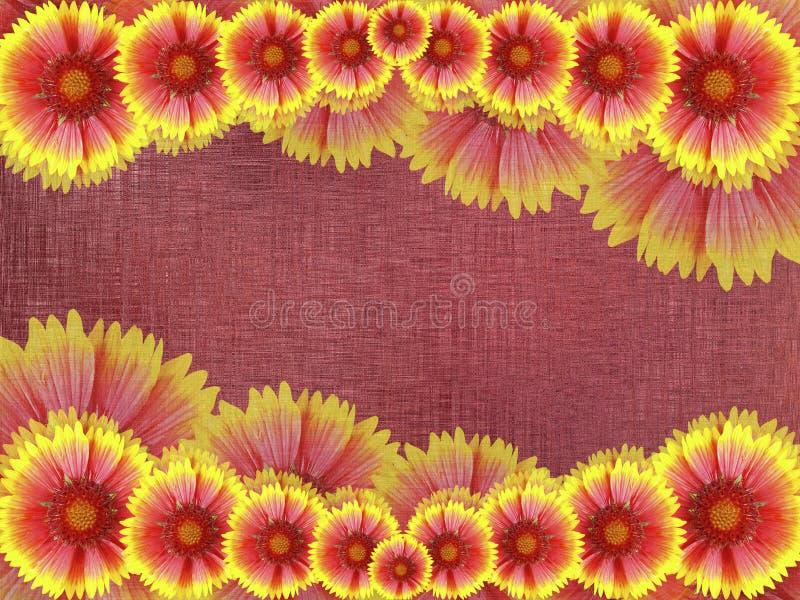 fiori Rosso-gialli, sul fondo del tessuto di Borgogna Composizione floreale luminosa Scheda per la festa Collage dei fiori Natur illustrazione di stock