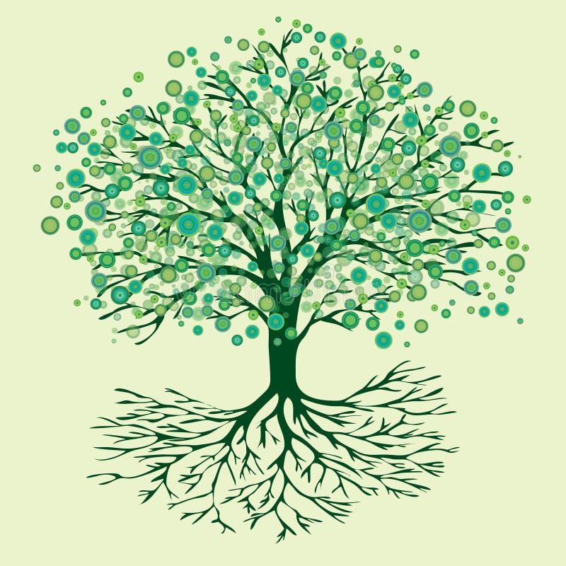 Fiori rotondi di verde dell'albero della vita fotografia stock libera da diritti