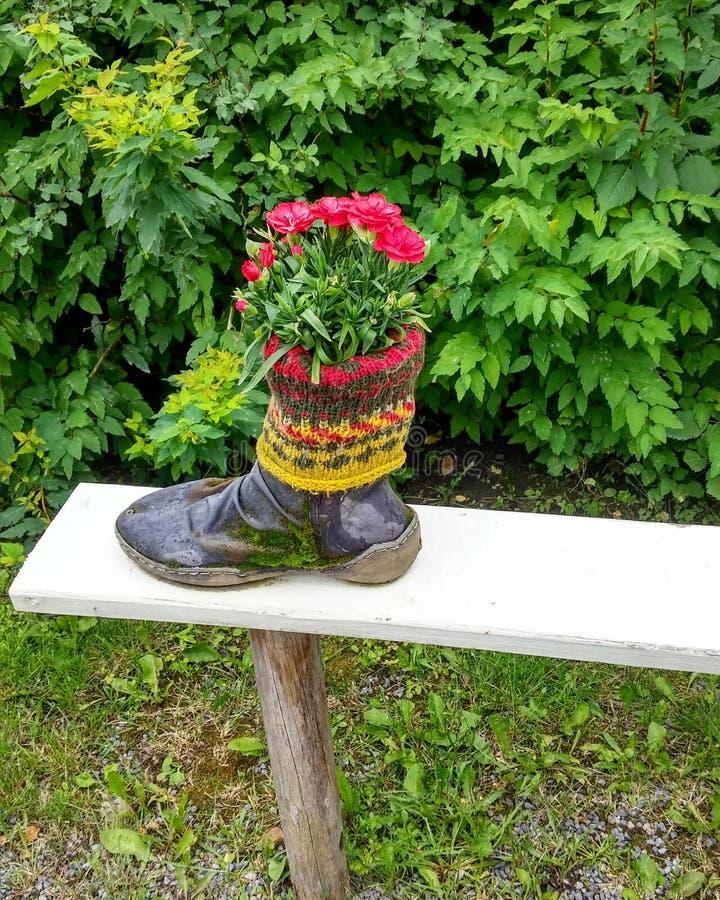 Fiori in scarpa immagini stock