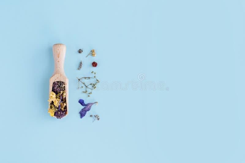 Fiori secchi in cucchiaio di legno su fondo blu Disposizione piana, vista superiore immagini stock libere da diritti