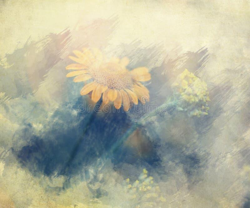 Fiori selvaggi colorati giallo d'annata fotografia stock libera da diritti