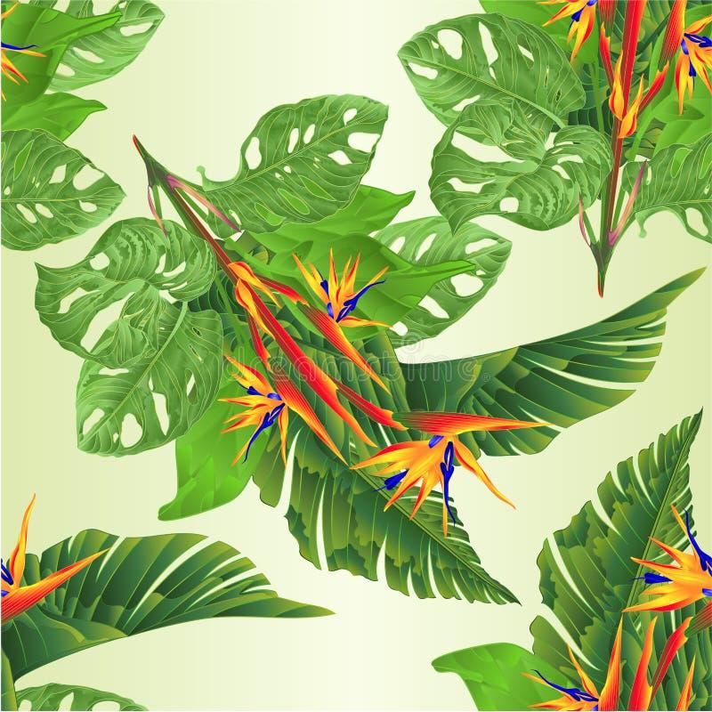 Fiori strelitzia reginae senza cuciture di struttura di bello e foglie e monstera tropicali della banana sul vettore d'annata i d royalty illustrazione gratis