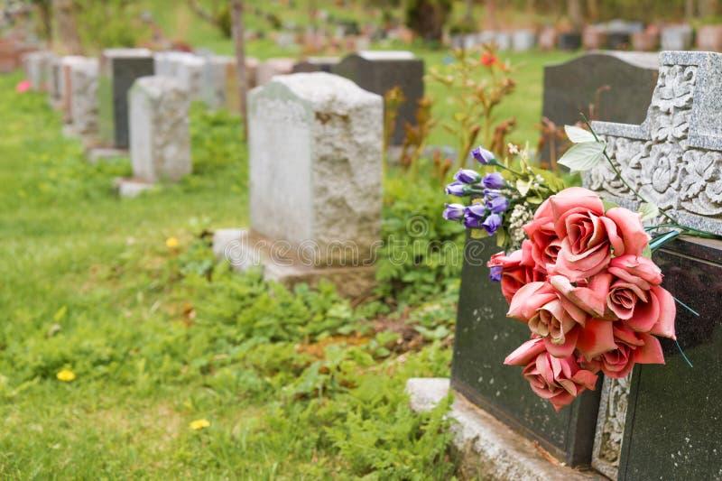 Fiori su una pietra tombale in un cimitero con molte pietre tombali fotografia stock