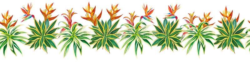 Fiori succulenti delle piante tropicali del nastro del cactus senza cuciture royalty illustrazione gratis