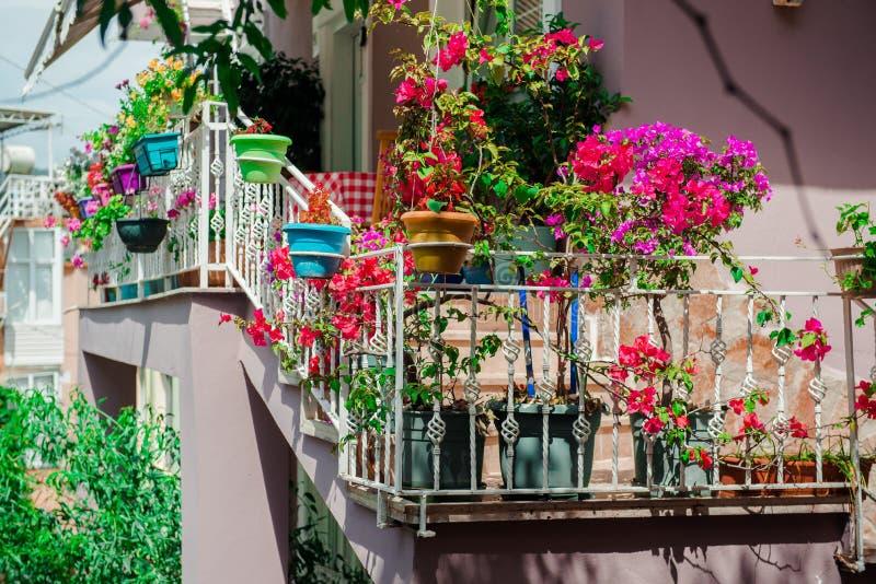 Fiori sul balcone immagine stock. Immagine di balaustra - 34011259