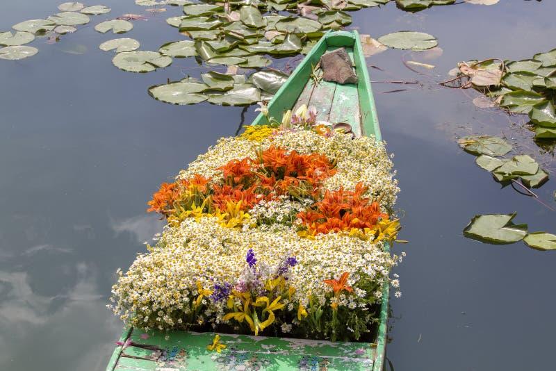 Fiori sulla barca al mercato di galleggiamento della mattina su Dal Lake a Srinagar, India immagine stock