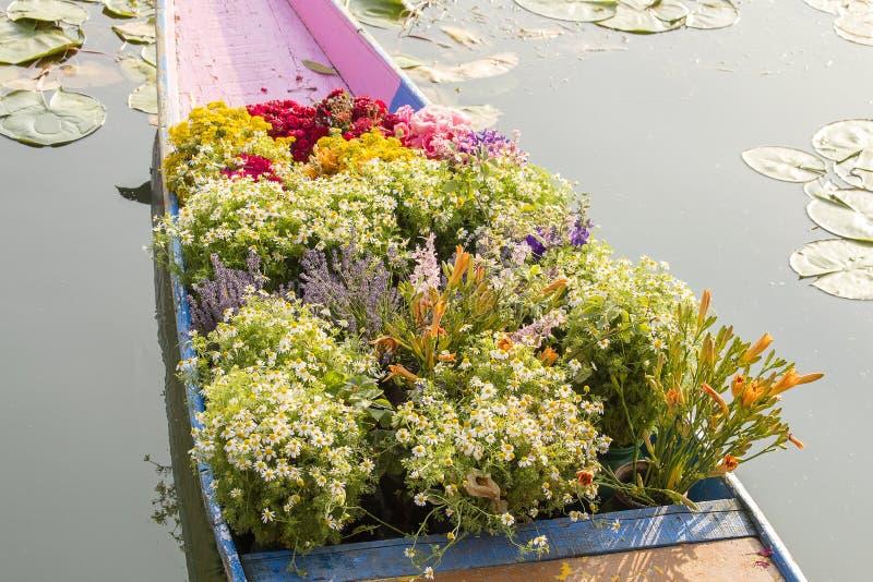 Fiori sulla barca al mercato di galleggiamento della mattina su Dal Lake a Srinagar, India immagine stock libera da diritti