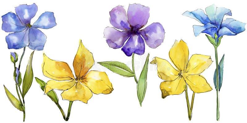 Fiori variopinti del lino dell'acquerello Fiore botanico floreale Elemento isolato dell'illustrazione royalty illustrazione gratis
