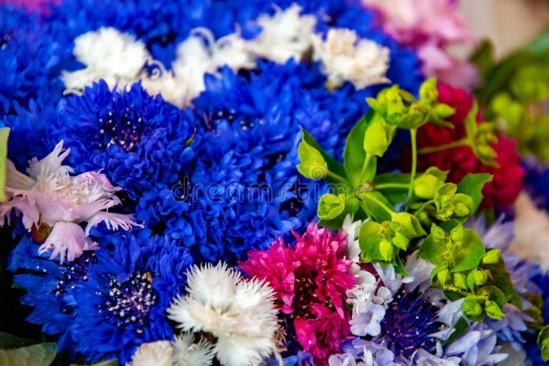 Fiori variopinti luminosi in primo piano del mazzo di estate Petali blu, viola, di rose e bianchi dei garofani Primo piano fresco immagine stock libera da diritti