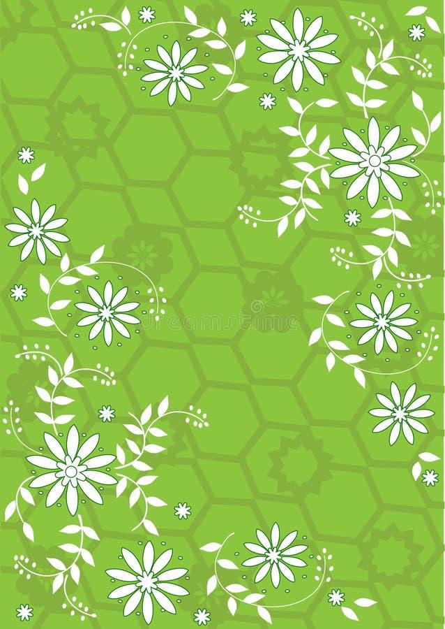 Fiori verdi e bianchi illustrazione di stock for Fiori verdi