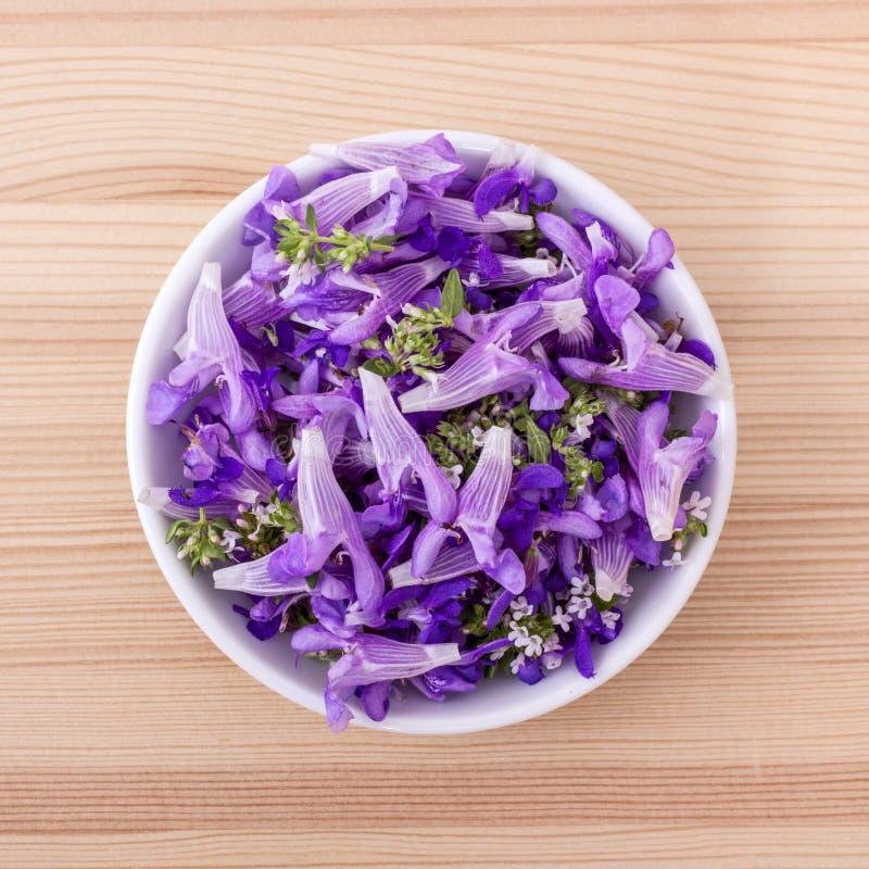 fiori viola e commestibili immagine stock
