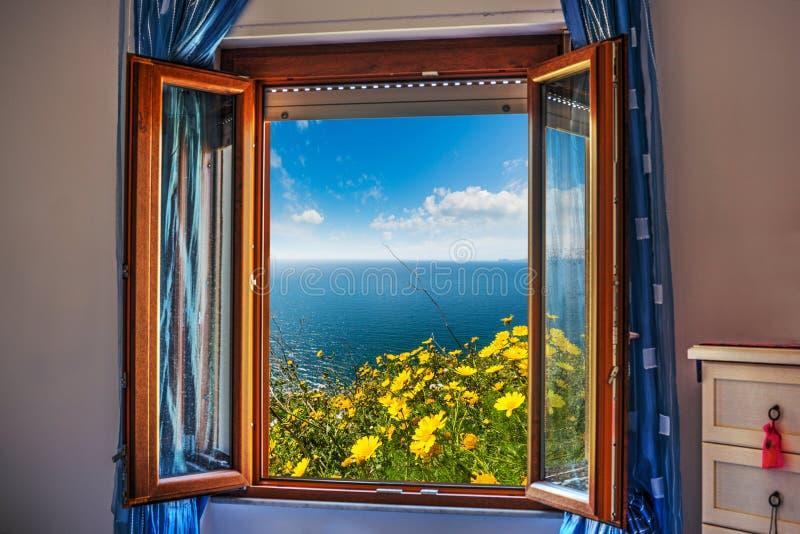 Fiori visti attraverso una finestra aperta immagine stock immagine di ambiente nubi 76744927 - Fiori da finestra ...