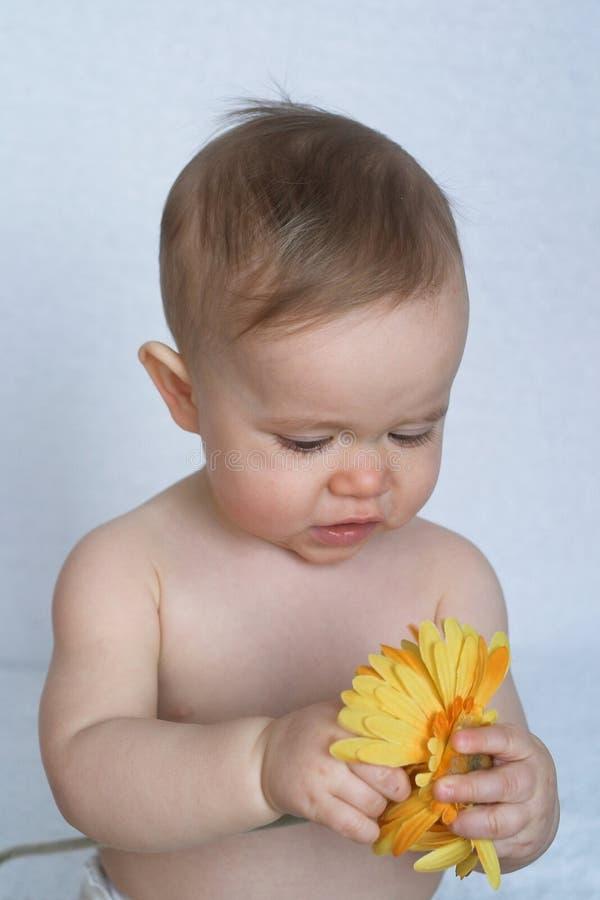 Fiorisca il bambino fotografia stock libera da diritti