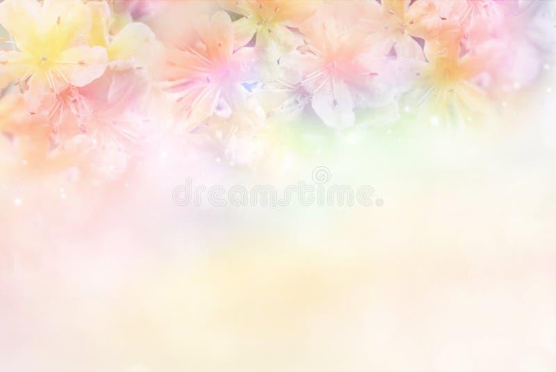 fiorisca il fondo molle nel tono pastello per il biglietto di S. Valentino immagini stock