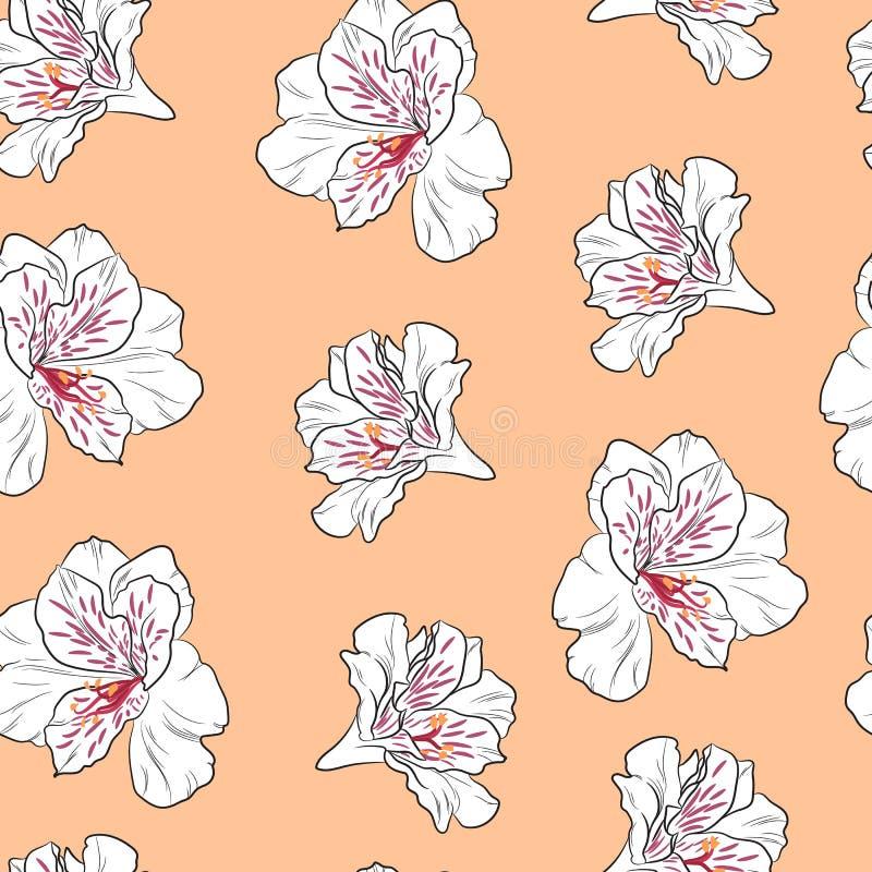 Fiorisca il modello senza cuciture con i bei fiori del giglio di alstroemeria sul modello arancio del fondo illustrazione di stock