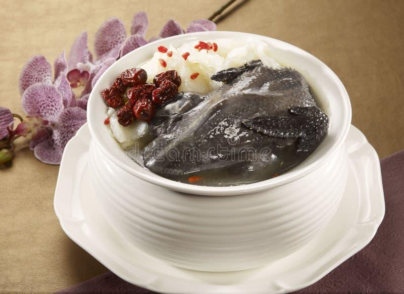 Fiorisca la gouache Phoenix di coltivazione della minestra di pollo nera in briciolo immagine stock