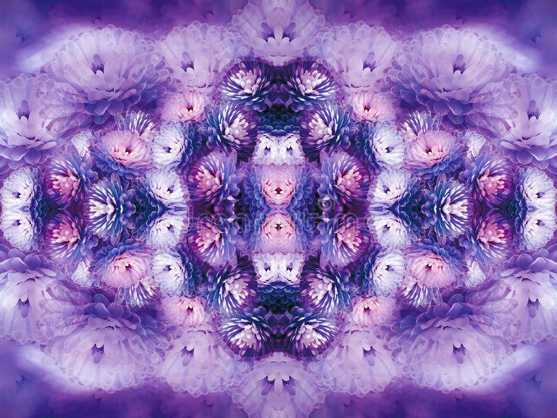 Fiorisce il crisantemo bianco porpora su fondo confuso di fondo floreale d'annata colorato di viola Composizione nel fiore illustrazione vettoriale