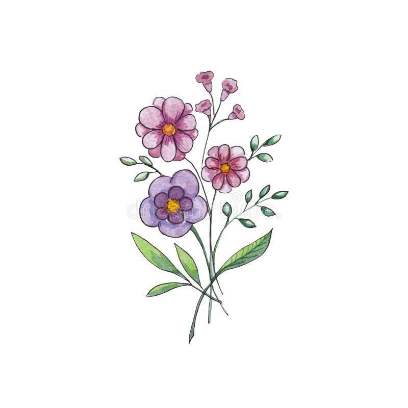 Fiorisce l'illustrazione dell'acquerello Composizione manuale mot illustrazione di stock