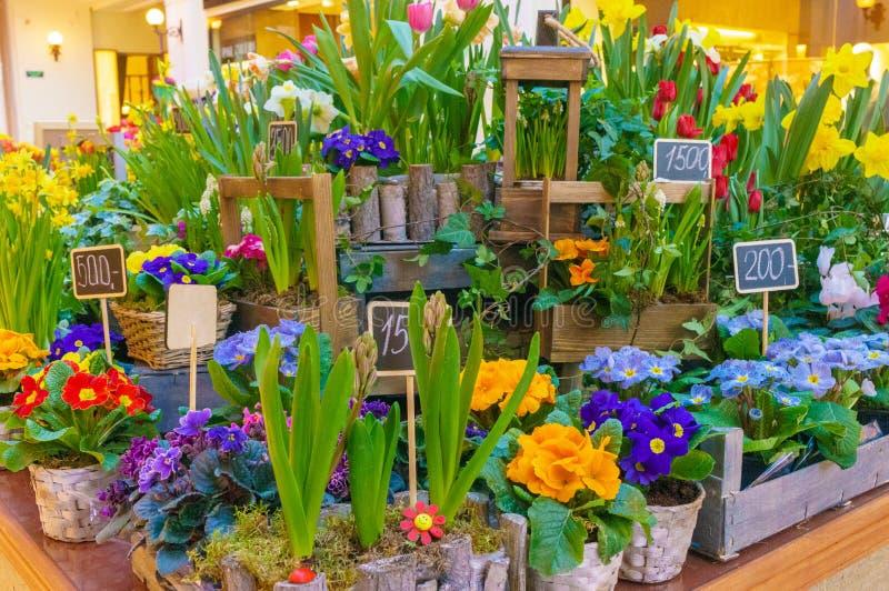 Fiorisce la composizione Priorità bassa astratta dei fiori Fiorista femminile che fa bello mazzo al negozio di fiore fotografie stock