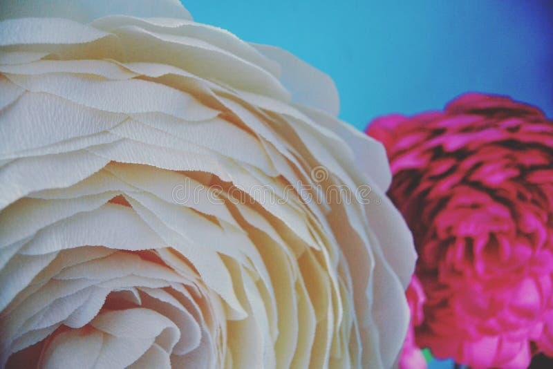 Fiorisce la rosa fatta a mano di bianco immagini stock libere da diritti