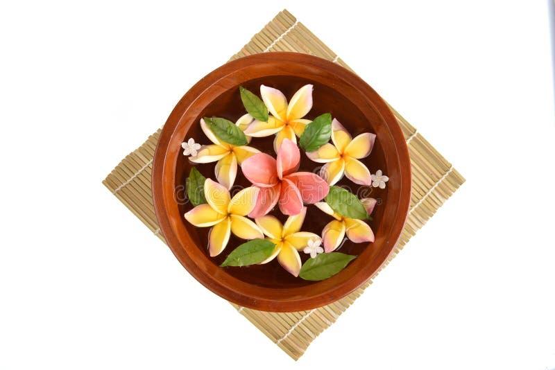 Fiorisce la vasca della stazione termale, vasca della stazione termale dei fiori del frangipane fotografia stock libera da diritti