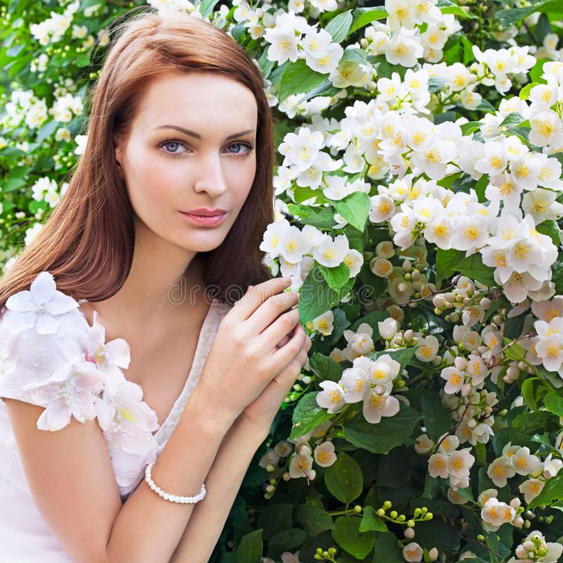 fioritura fotografie stock
