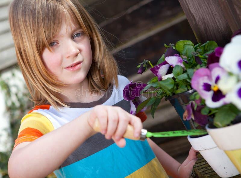 Fioritura di giardinaggio del bambino di fiori immagine stock libera da diritti