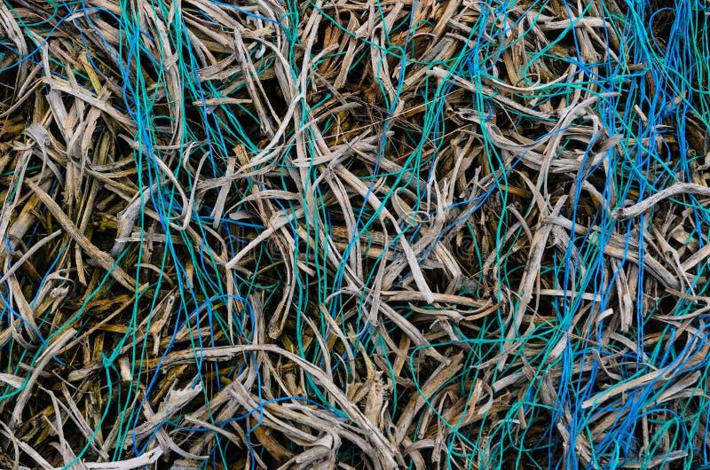 Fios verdes e azuis fotografia de stock royalty free