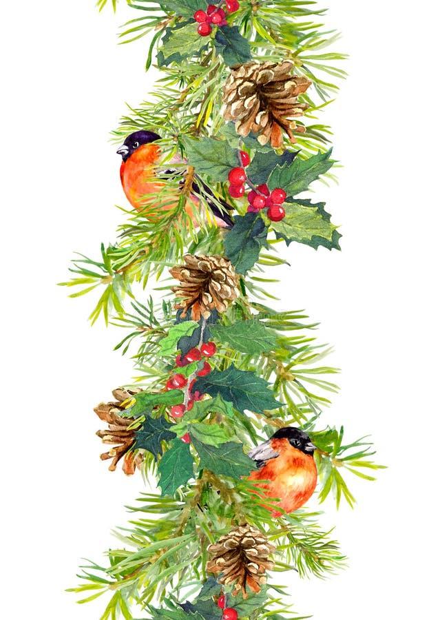 Fir border - christmas tree branches, cones, mistletoe, red bird. Watercolor frame. Fir border - christmas tree branches, cones, mistletoe and red bird stock image